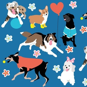 Happy Dog Days