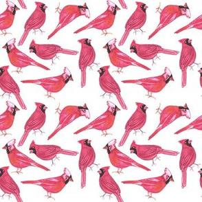 Northern cardinal or Cardinalis cardinalis watercolor birds painting