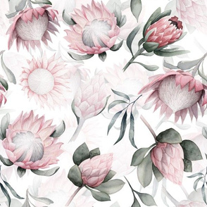 """12"""" Hand drawn watercolor protea flower blush floral"""