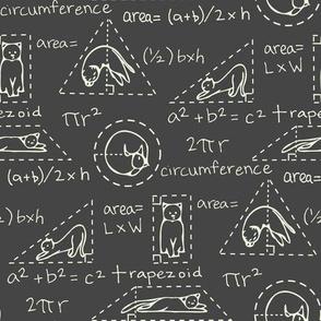 MatheCATics-blackboard