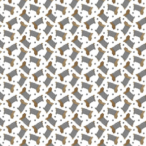 Tiny Trotting Yorkshire Terriers and paw prints - white