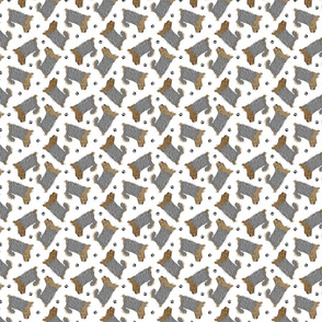 Tiny Trotting undocked Yorkshire Terriers and paw prints - white