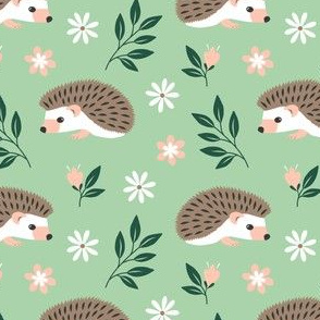 Hedgehogs on a meadow