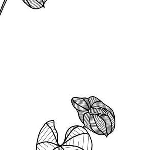 Anthurium Black on White LARGE