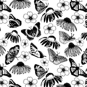 Black Echinaceas and Butterflies on White
