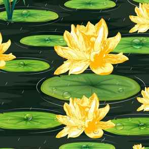 April showers in a Lily Pond- Large Scale