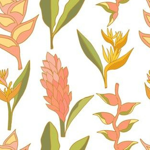 Coral Tropical Floral