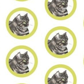 Zoey Kitty Citron