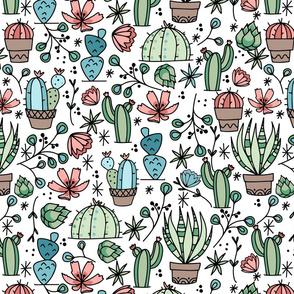 Boho Cacti