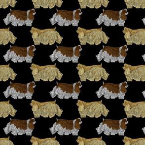 Trotting Cocker Spaniels - black