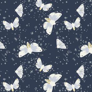 Moths at Night