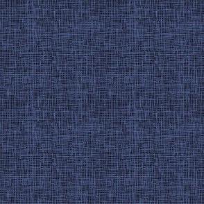 Woven Linen Like Texture in Blue - Sandlot Baseball Sports Collection
