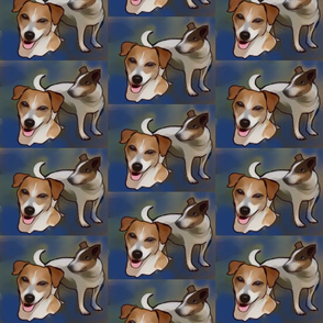Jack Russells  collage