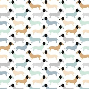 Vintage doxie sausage dogs dachshund illustration pattern pastel blue mint boys