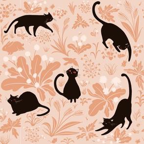 Cats on Peach