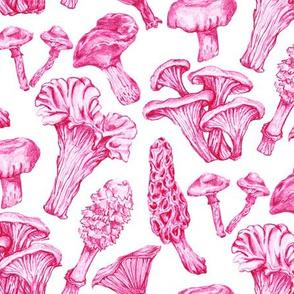 Fungus Among Us Fuchsia