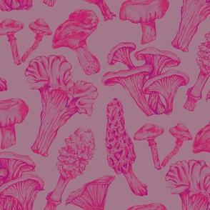Fungus Among Us Funky Pink
