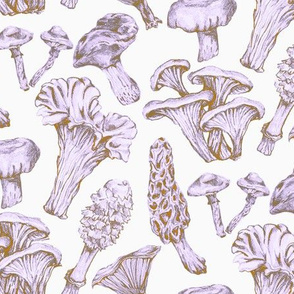 Fungus Among Us Lavender