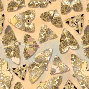 pearly moths Sahara