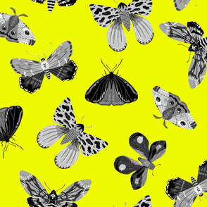Lovely Moths - Scattered Black and White on Yellow - Large