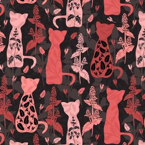 Cats & Catnip - Pink