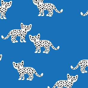 The minimal leopard baby wild cats gender neutral winter kids design cool blue winter boys