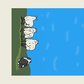 Bearded Collie herding Sheep Blue Sky