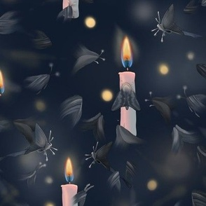 Moth to a candle