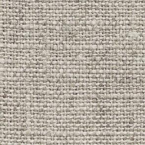 Burlap Texture // Ash