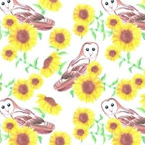 Watercolor birds Barn owl or Tyto alba and sunflower seamless painting