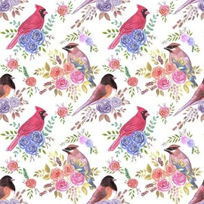 Cardinals juncos and waxwings on rose blossoms- Seamless birds watercolor