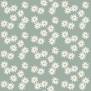 Daisies - dusty mint