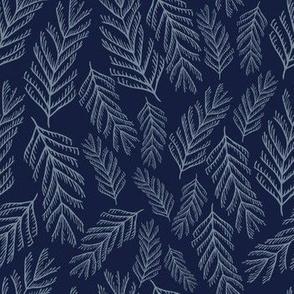 Silver Blue Pine