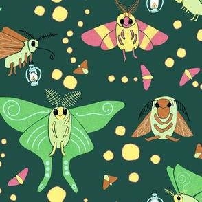 Cute Moths at Night