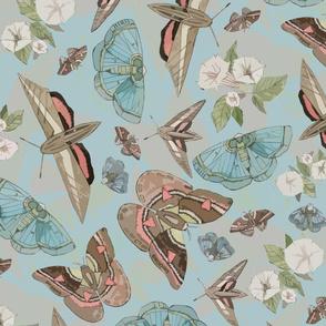 Blue Tossed Moths