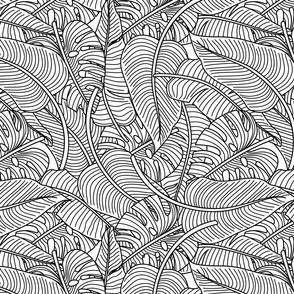 Tropical Leaves Banana Monstera Black  and White