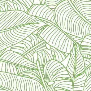 Tropical Leaves Banana Monstera Lime Green and White