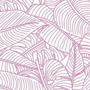 Tropical Leaves Banana Monstera Pink and White