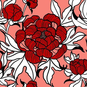 peony in coral