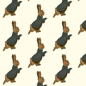 Peter Rabbit AloneCreamBkgrd