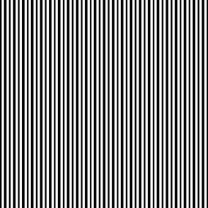 Black and White Small Stripes