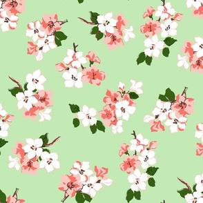 Blossom (Pistachio)