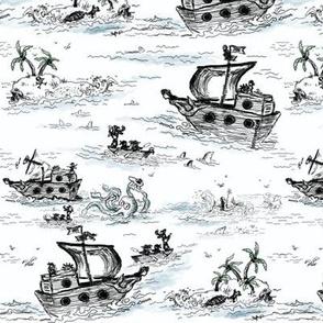 A Pirates Toile