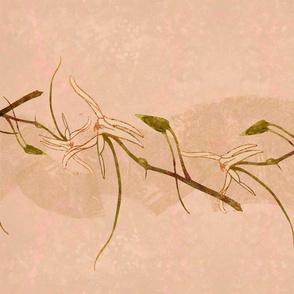 Wild Orchids-magenta stripe 1