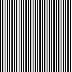 Medium Black and White Small Stripes