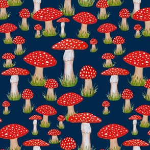 red mushroom on navy