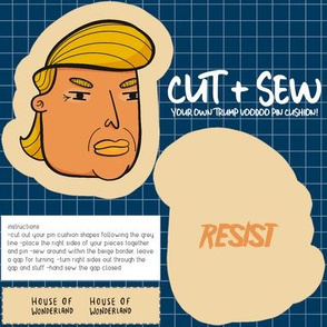 Donald Trump Voodoo Doll Pin Cushion