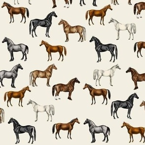 Vintage Horses Hand Coloured, Small