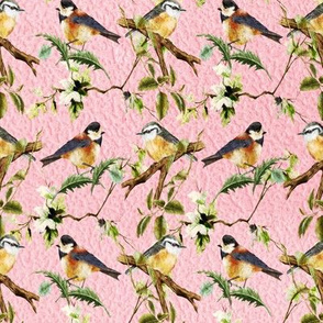 Perching Birds on Pink Wildlife Print