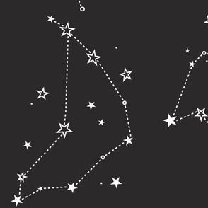 large - stars in the zodiac constellations in white on charcoal